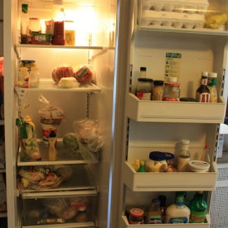 Kitchn Cure Day One Fridge